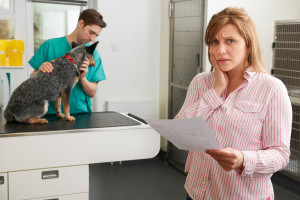 budgeting for pet health insurance
